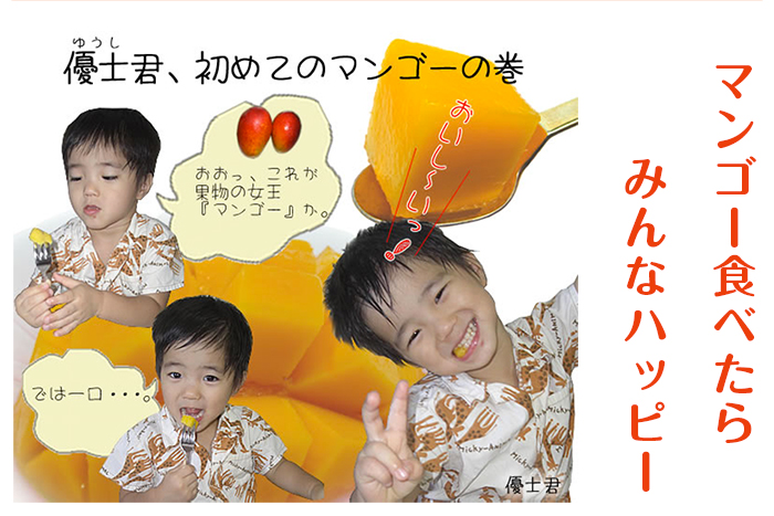 沖縄産 絶品・熟甘マンゴー