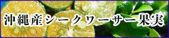 シークァーサー果実(青切り)